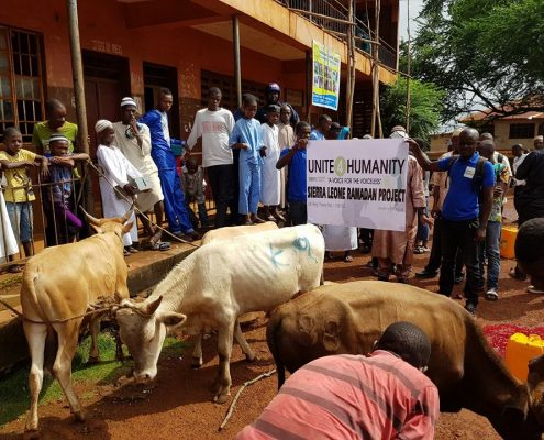 Qurbani Donations in Africa UK Muslim Charity