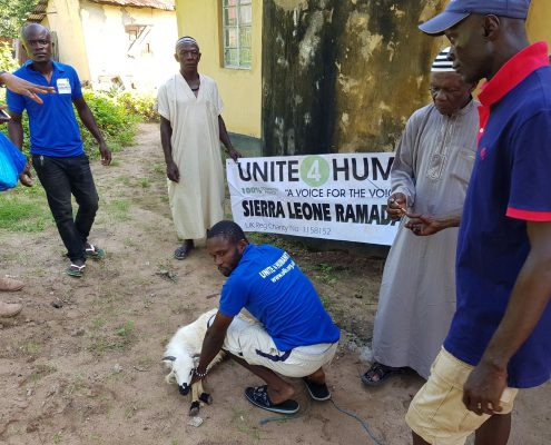 Qurbani Appeal UK Charity, Qurbani Donations