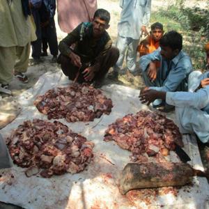100% Donation Policy Qurbani Appeal, Qurbani Donations